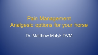 Moore Equine Client Semiar 2017 - Pain Management for Your Horse - Dr. Matthew Malyk