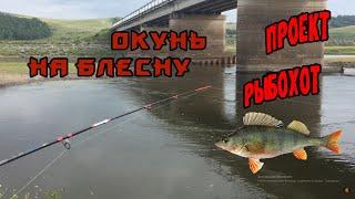 Рыбалка на Сыде Красноярский край Окунь