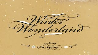 [Full Album] Sung Si Kyung -- Winter Special Remake