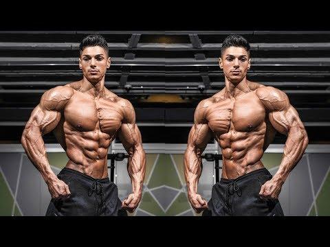 Andrei Deiu, Sergi Constance, Gerardo Gabriel, Steve Cook And Jeff Seid 💪 Workout Motivation