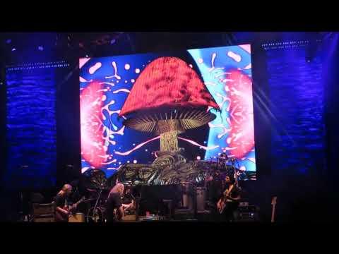 Allman Brothers Band - Live at Lockn...
