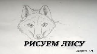 Как нарисовать лису. Морда/ How to draw face fox Рисунки карандашом #3(Рисуем морду лисы шаг за шагом с помощью обычного карандаша. Щаг за шагом показываю. Достаточно уметь рисов..., 2016-08-20T13:09:13.000Z)