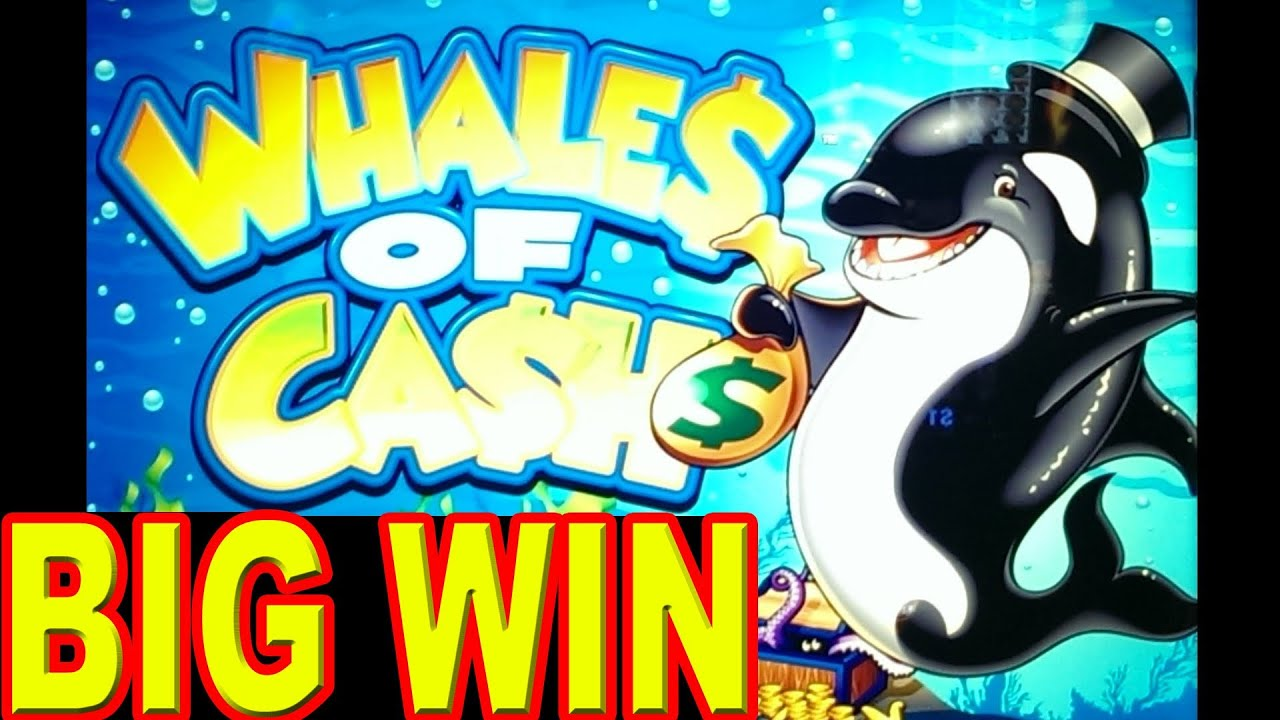 Whales Casino