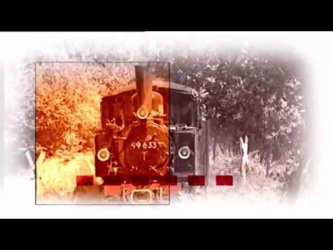 """Jubiläum: """"25 Jahre Eisenbahn-Romantik"""" im SWR Fernsehen"""