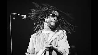 Peter Tosh  - Lesson In My Life (Alternate take, No Nuclear War sessions)
