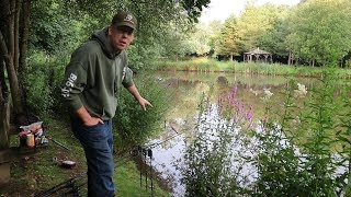 How to Catch Carp in a Small Pond - Carp Fishing England (Baits and Rigs)