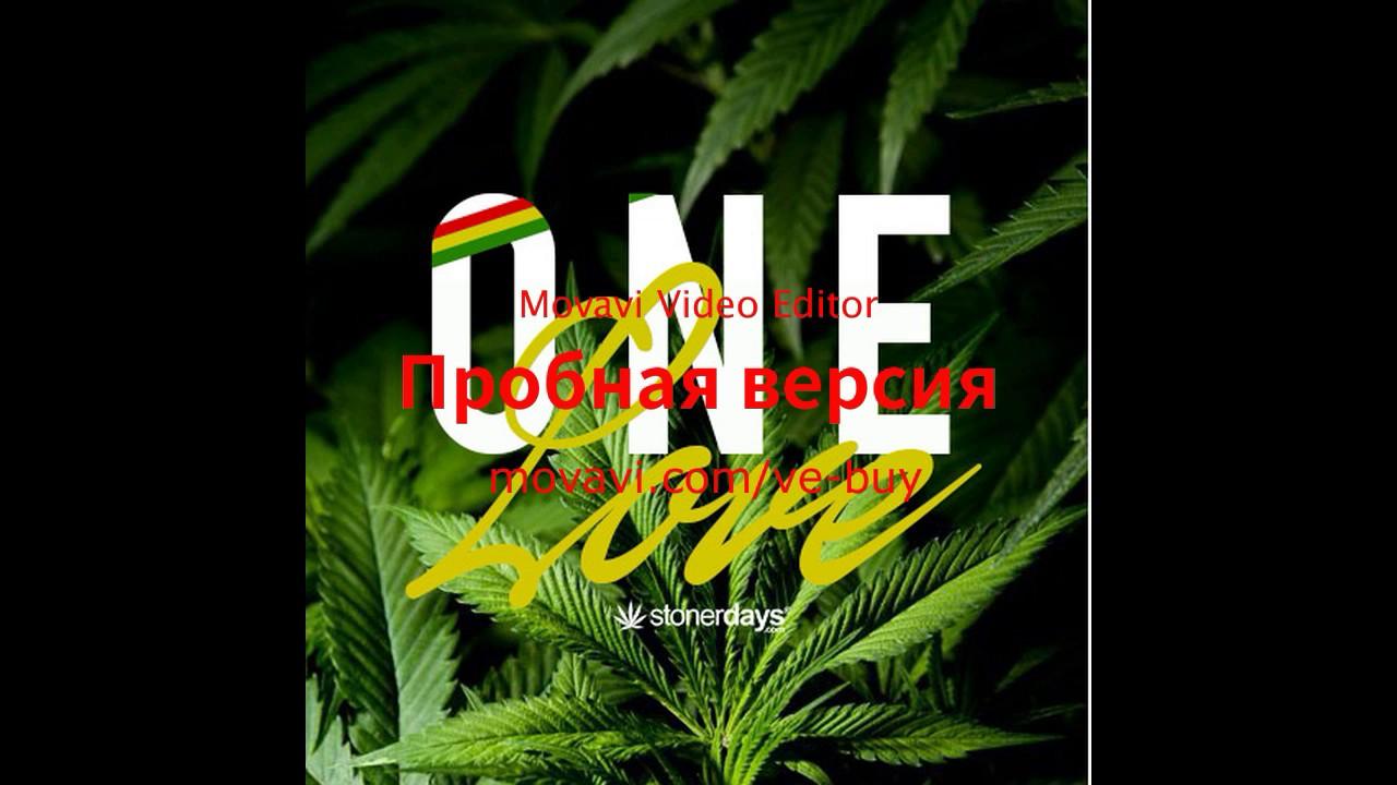 Песня жизнь моя марихуана марихуана приход
