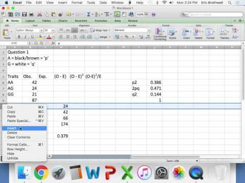 Population Genetics Statistics