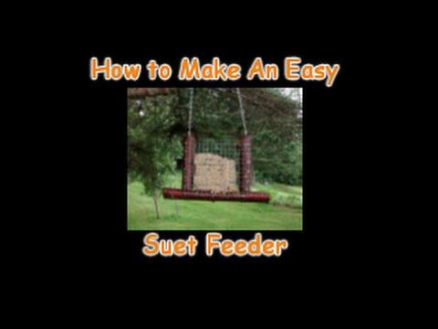 how to make suet bir feeder