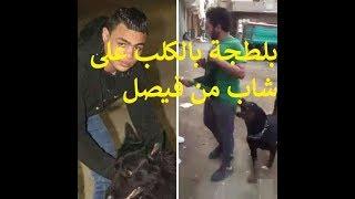 التحقيق مع سيد سيكا صاحب فيديو  الكلب بفيصل