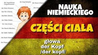 Części ciała po niemiecku