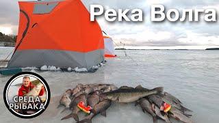 СУДАК на МОТЫЛЯ Зимняя рыбалка с ночевкой на ДВОЕ суток Ловля ЛЕЩА зимой на ВОЛГЕ 2021
