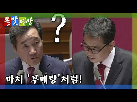[돌발영상] 마치 '부메랑'처럼! / YTN