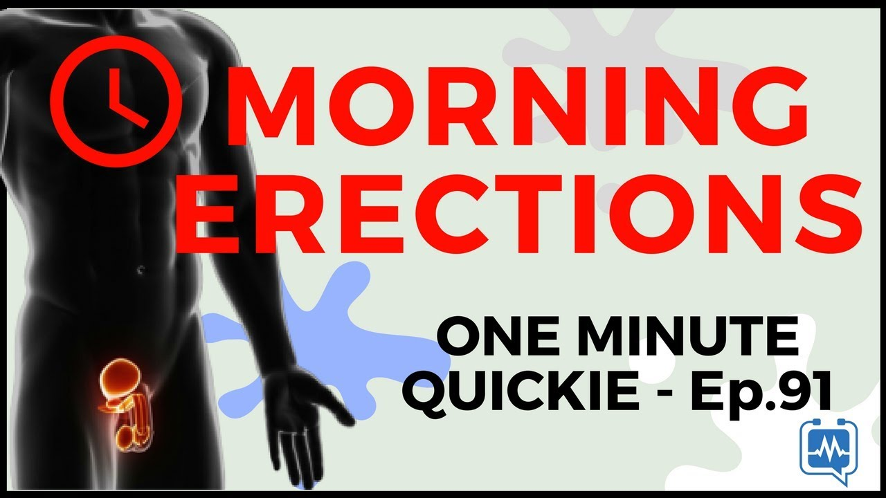 Why do men have an erection in the morning Opinion of scientists
