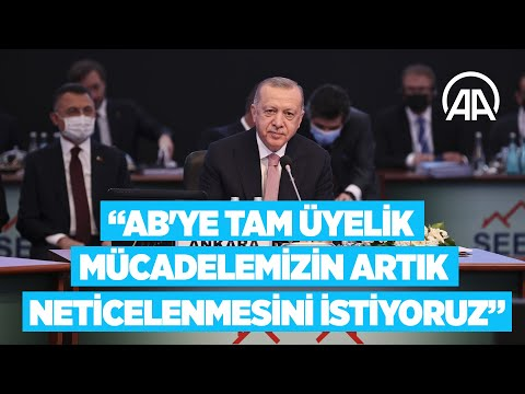 Cumhurbaşkanı Erdoğan: AB'ye tam üyelik mücadelemizin artık neticelenmesini istiyoruz