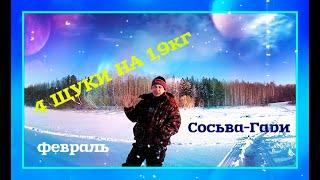 4 щучки на 1 9кг Рыбалка на реке Сосьва 06 02 2020