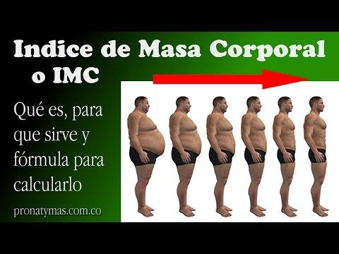 Indice de Masa Corporal o IMC