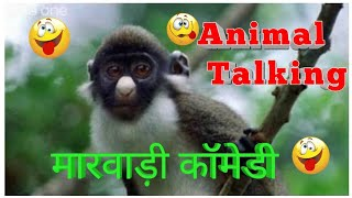 Funny Animals Talking marwadi version