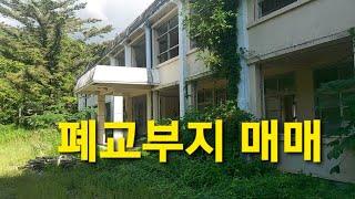 임야아래 시골학교 폐교 임대 매매 부지 2500평대 창…