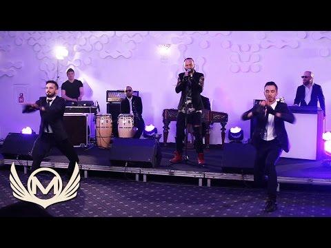 Matteo - Panama | Live Act