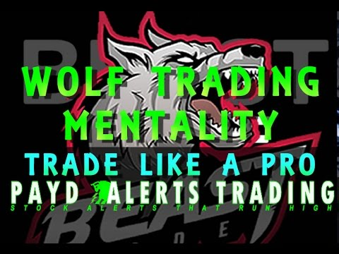 Learn To Day Trade - Trade Like A Pro - Wolf Trading Mentality