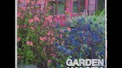 garden halseyaudio - Halsey Garden