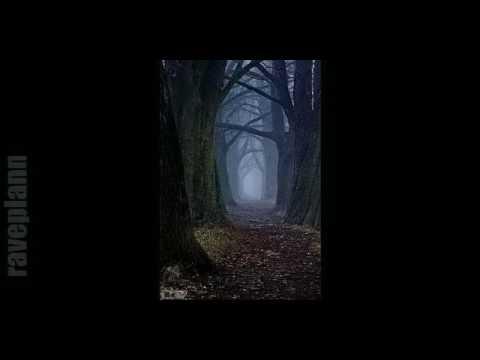 Dark forest FLIPKNOT Parvati Records Series 16 24 11 2016
