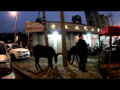 Deer and donkey restaurant in China