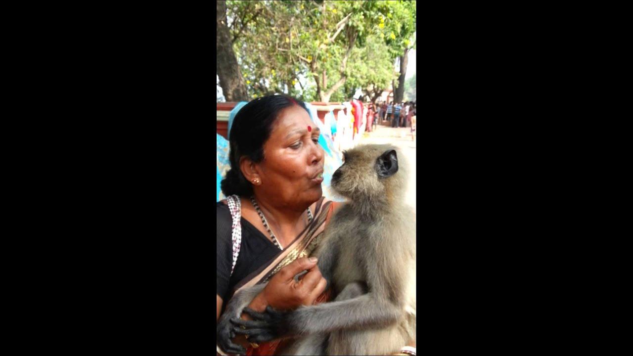 Women Feeding Monkey With Her Mouth - Youtube-9009
