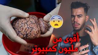 لن تنام بسبب ما ستسمعه عن المخ البشري