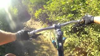 Whistler - Zappa Trails - Jellyroll Gumdrop