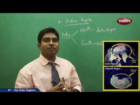 The Polar Regions   8th Social Studies   AP & TS State Board Syllabus   Live Video