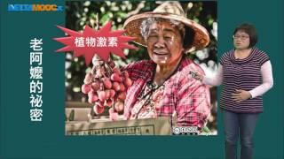 高中 生物 郭瑋君 植物的荷爾蒙 植物激素介紹 1080 0411