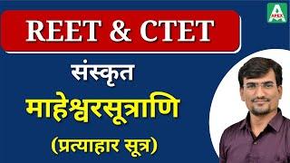 REET Sanskrit Classes संस्कृत (Part-3) | Surendra Saran Sir