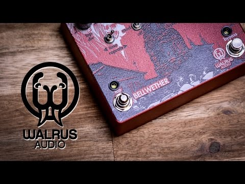 Walrus Audio Bellwether (Delay) - Review (4K iana) resolutions fixed