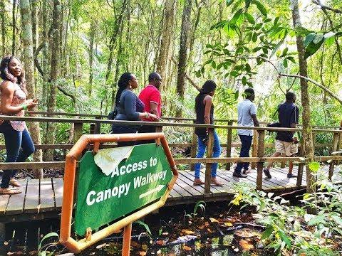 Travel Nigeria: ZeeGoes Exploring Lekki Conservation Centre LCC during Nigeria Travel Week