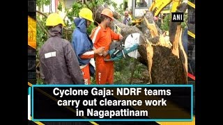 Cyclone Gaja: NDRF teams carry out clearance work in Nagapattinam - #Tamil Nadu News