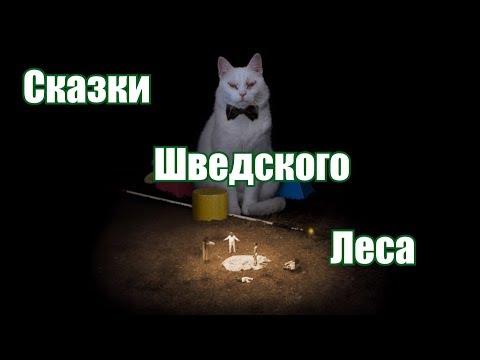 """Отзыв о фильме """"Коко-ди Коко-да"""" 2019."""