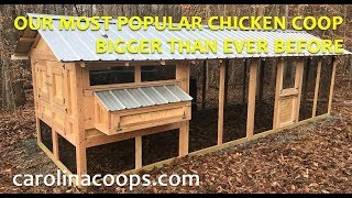 Our Popular American Coop - Only Bigger!