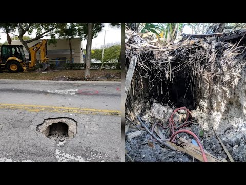 The FBI found a tunnel leading to a bank in Florida suburbia. Did a robber have plans?
