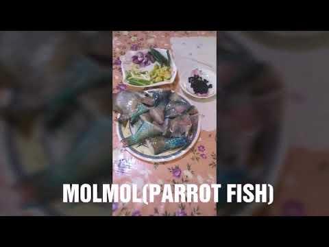 SIMPLING LUTO MOLMOL INUN-UNAN(PARROT FISH)