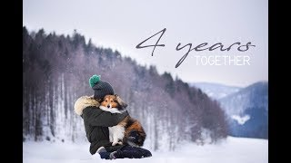 4 years TOGETHER | with sheltie Bonnie