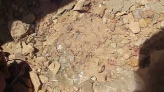 البحث عن الاحجار الكريمة في الجزائر