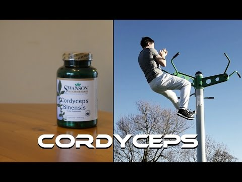 Cordyceps Sinensis - A Powerful Mushroom for Energy, Testosterone and Aerobic Performance