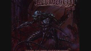 Debauchery - Chainsaw Masturbation