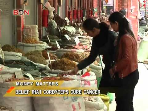 Can Chinese Medicine Cure Cancer?- China Price Watch - September 17,2013 - BONTV China