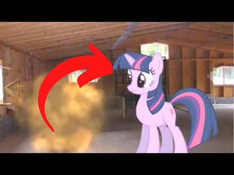 5 TIMES MY LITTLE PONY CAUGHT ON CAMERA & SPOTTED IN REAL LIFE!