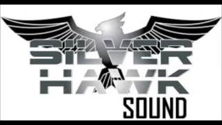 Silver Hawk ls Stone love  1994