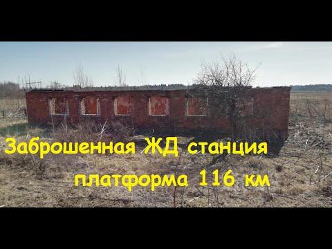 Заброшенная ЖД станция платформа 116 км. Металло коп.Копаем чермет.