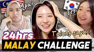 Apa berlaku bila orang Korea bercakap Melayu 24jam di Korea? (+ reaksi kawan2 Korea dan Malaysia)
